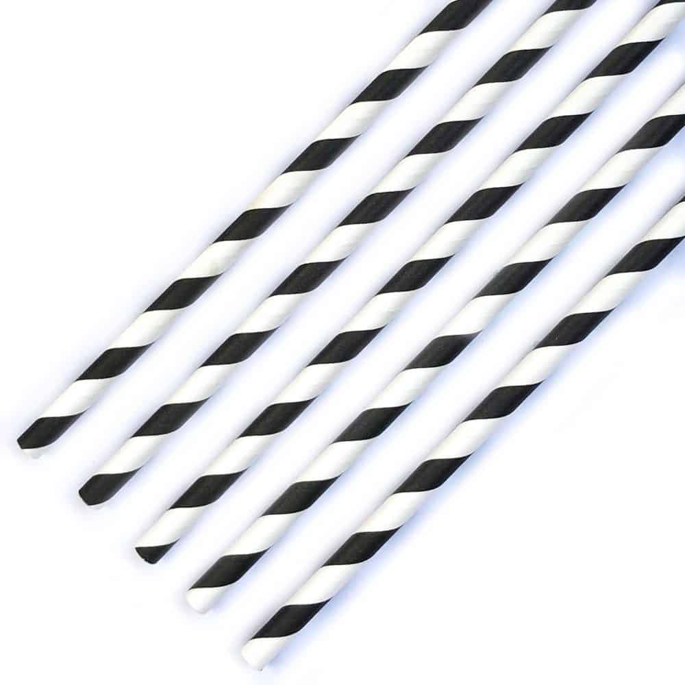 The Conscious Party Box: Black And White Stripe Paper Straws