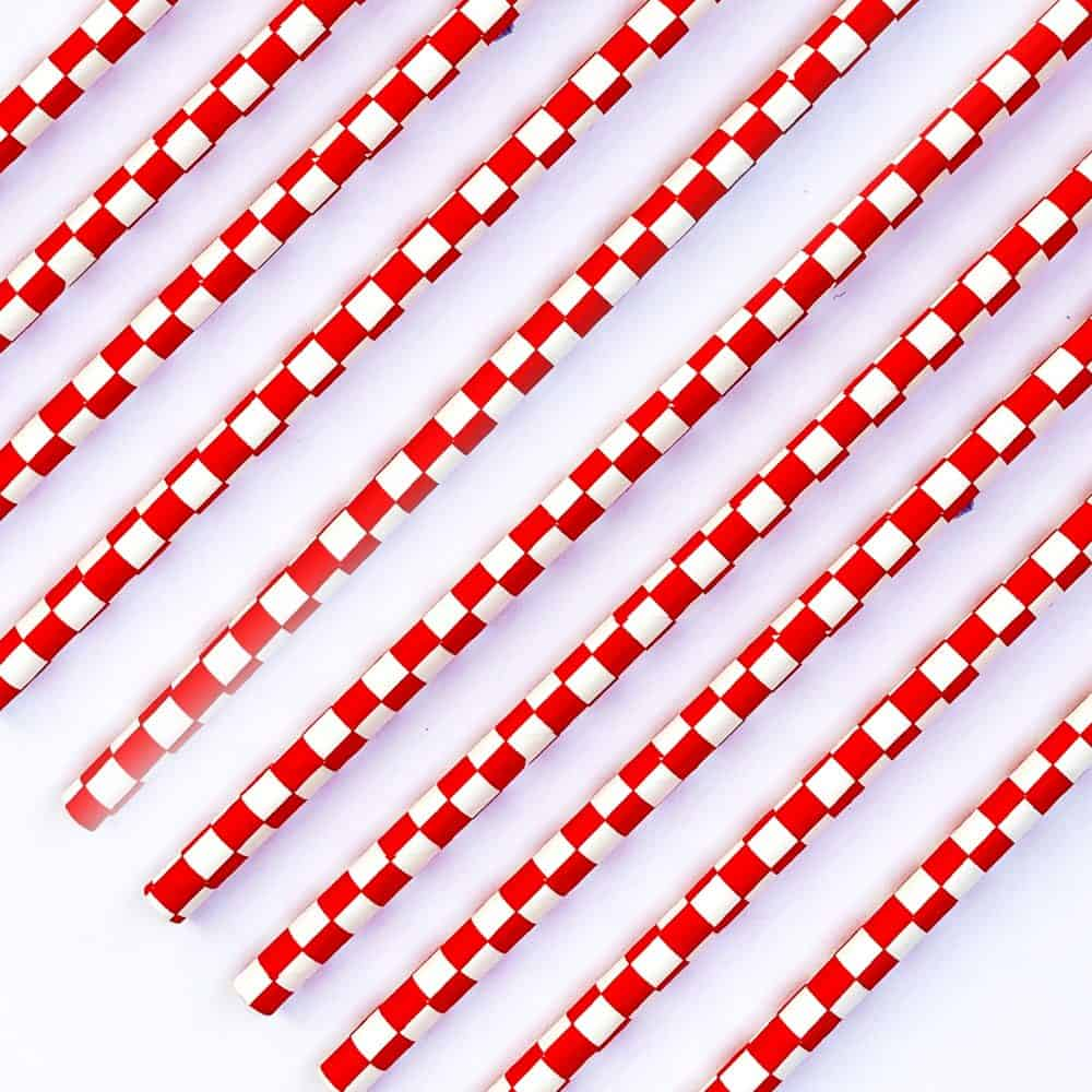 The Conscious Party Box: Red And White Checker Paper Straws