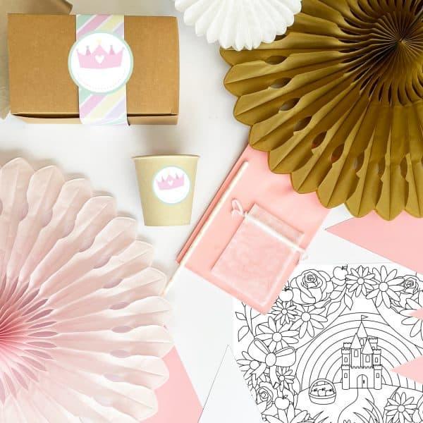 The Conscious Party Box: Princess Party Box
