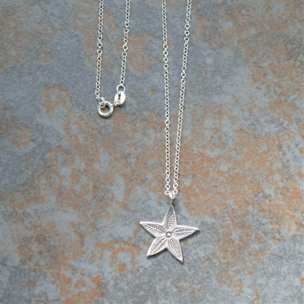 P076 Hoshi Star Pendant On Silver Chain Min Scaled Eco Friendly Products
