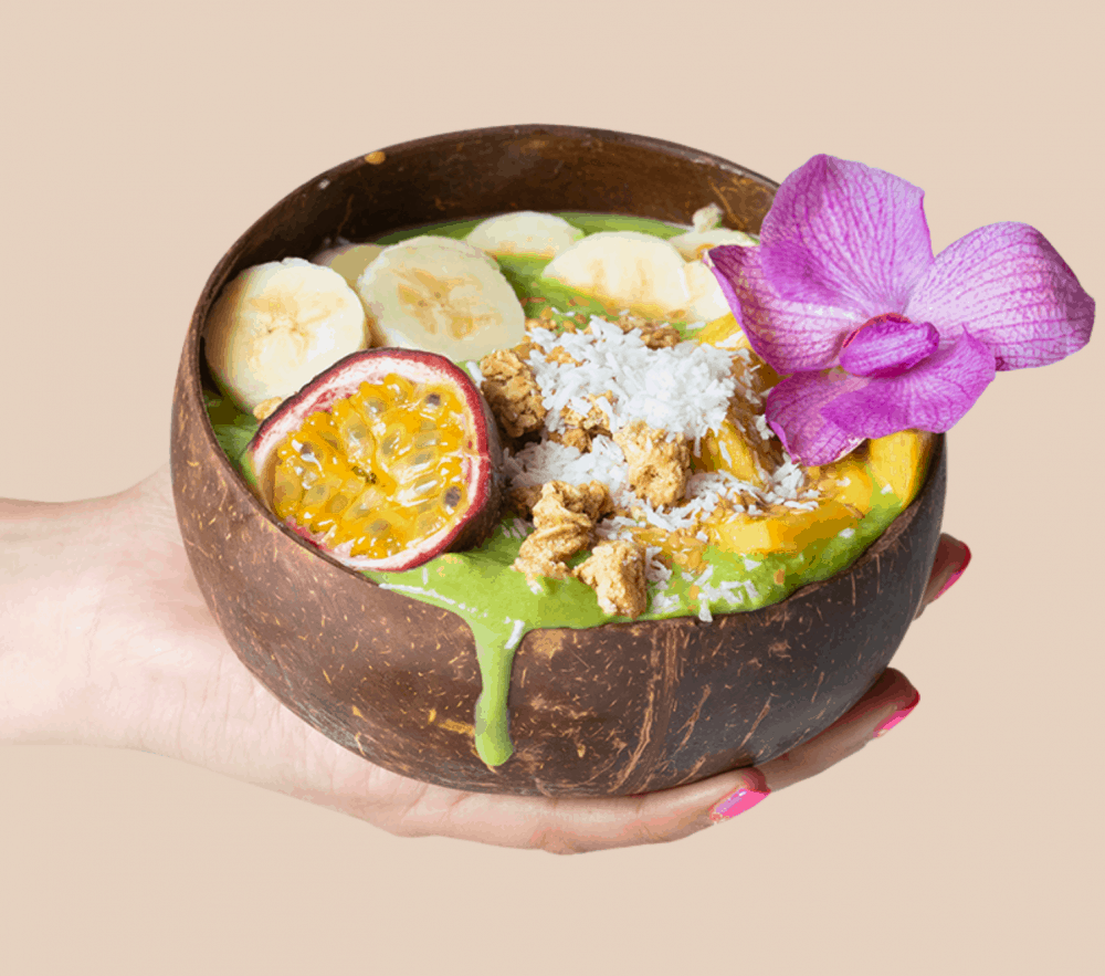Coconut Bowl Eco Friendly Products