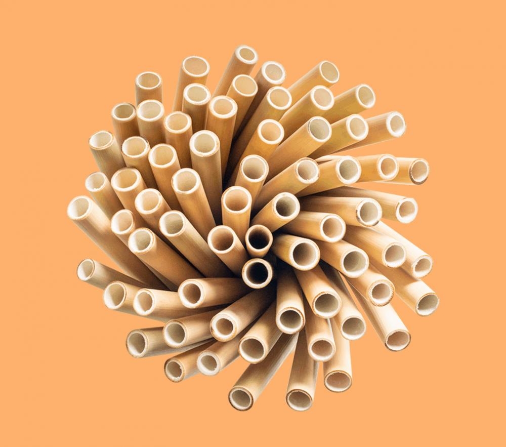 Straw Eco Friendly Products