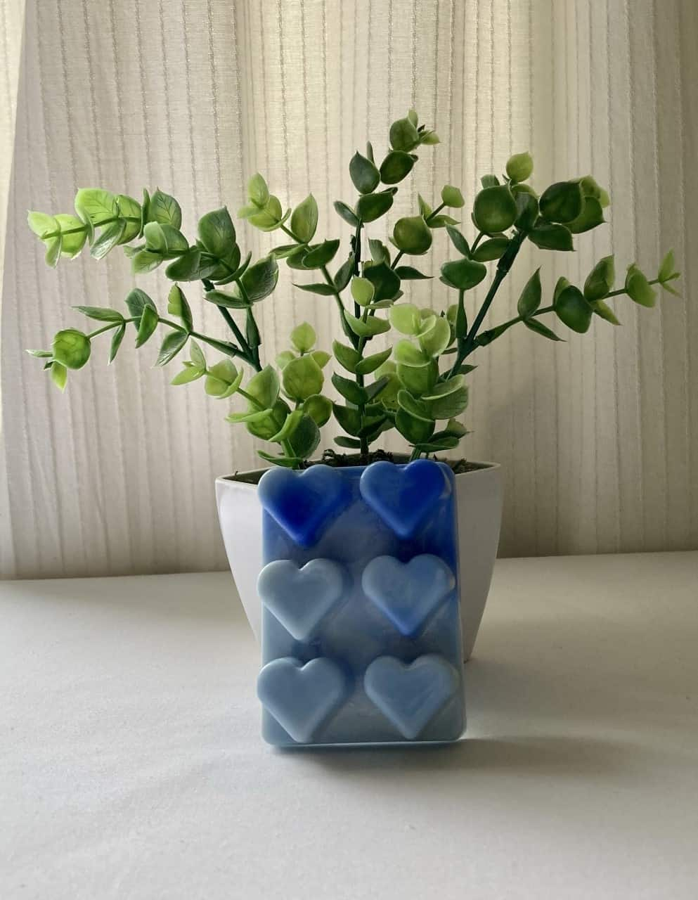 Heart Blue Eco Friendly Products