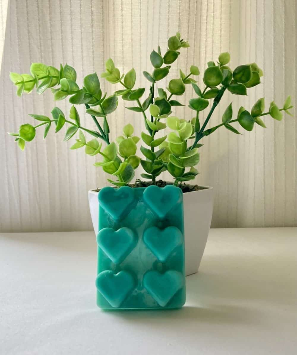 Heart Green Eco Friendly Products