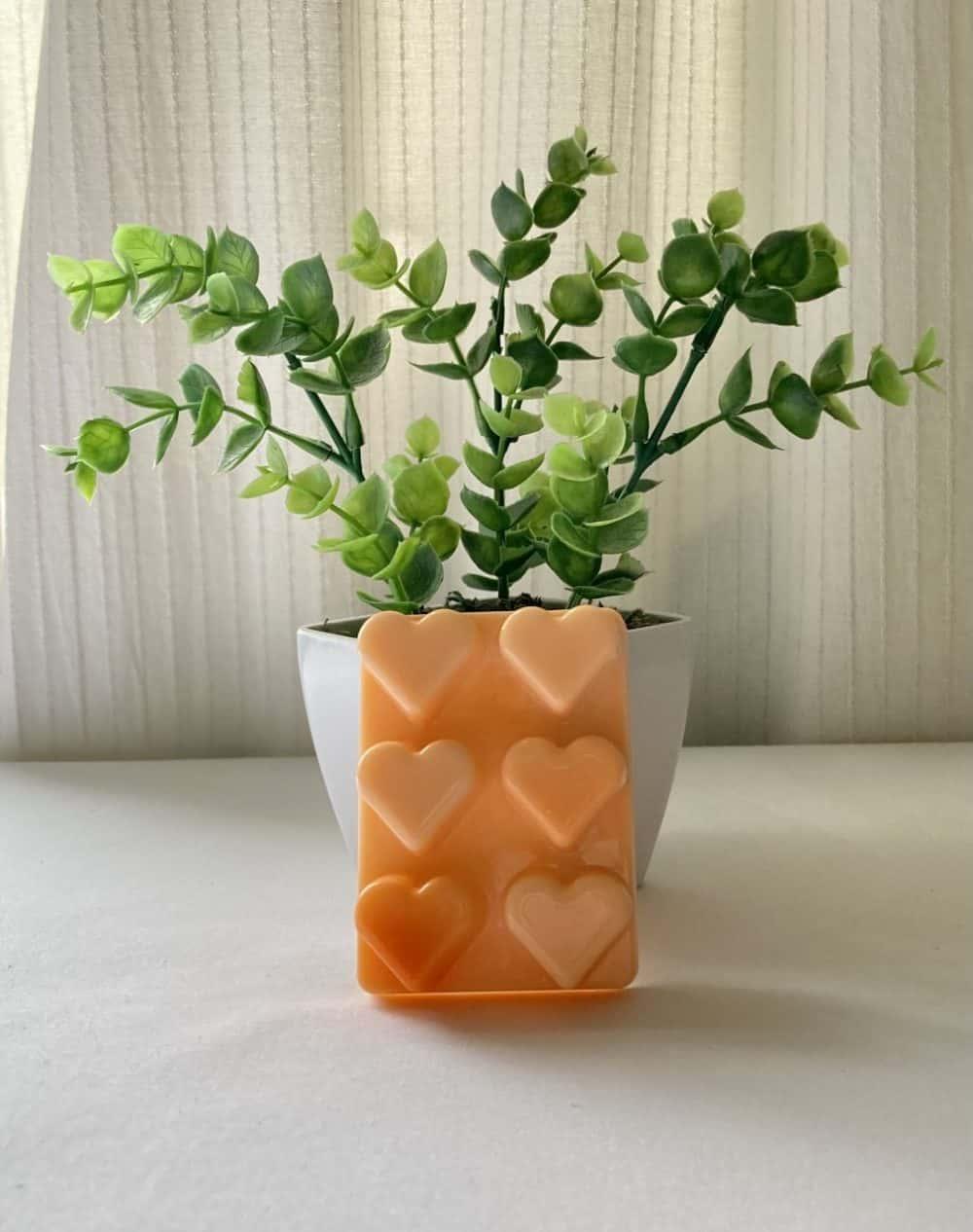 Heart Orange Eco Friendly Products